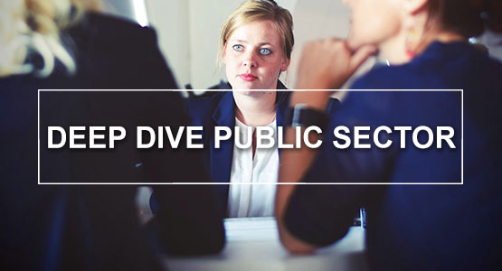 Deep Dive Public Sector